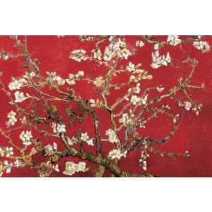 ゴッホ 花咲くアーモンドの枝 赤 ポスター/アートフレーム付