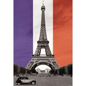 【送料¥290〜】 VIVA LA FRANCE エッフェル塔 シトロエン ポスター(151021)|posterbin2