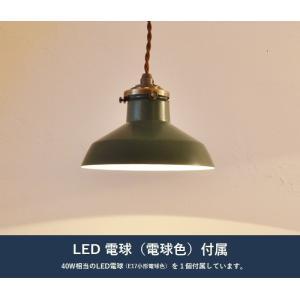 ジアンGNペンダントライトLED電球付属|potafleurs