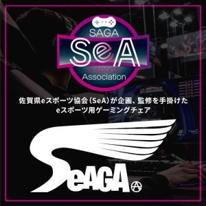 ゲーミングチェア eスポーツ ゲーム用 オフィスチェア パソコン デスクチェア ワーク用 学習イス 事務 eスポーツチェア セアガ03(BL/GR)|potarico|02