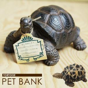 バンク 置物 小物 インテリア雑貨 貯金箱 PET BANK TORTOIS 貯金箱(カメ)|potarico