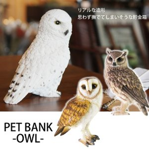 貯金箱 おもしろ 貯金箱 鳥 フクロウ PET BANK OWL|potarico