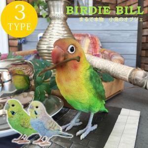 インコ ディスプレイ 置物 オブジェ インテリア 雑貨 小鳥 BIRDIE BILL(バーディ ビル)|potarico