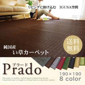 い草 い草ラグ い草カーペット  国産  プラードIGUSAラグ190×190|potarico