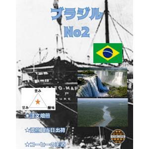 ブラジル No2 500g|potiercoffee