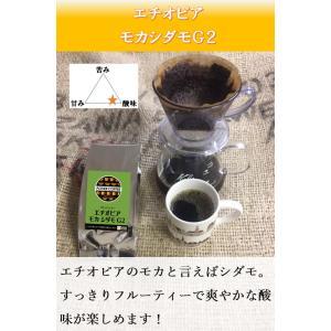 エチオピア シダモ G2 500g|potiercoffee