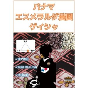 パナマ エスメラルダ農園 ゲイシャ 500g|potiercoffee