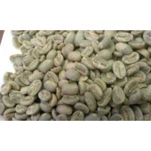パナマ エスメラルダ農園 ゲイシャ 500g|potiercoffee|03