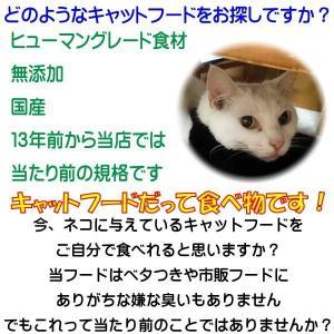 【お盆期間中も毎日発送】 国産 無添加 愛猫の健康を考えた キャットフード【 ねこのまんま 】 230g 高たんぱく 低脂肪 グルテンフリー ドライフード 全年齢対応 potitamaya-y 05