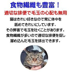 国産 無添加 愛猫の健康を考えた キャットフード【 ねこのまんま 】 800g4個セット 高たんぱく 低脂肪 グルテンフリー ドライフード 全年齢対応 potitamaya-y 11