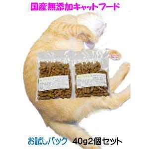 国産 無添加 愛猫の健康を考えた プレミアム キャットフード【 ねこのまんま 】 お試しセット 80g 高たんぱく 低脂肪 グルテンフリー ドライフード 全年齢対応|potitamaya-y