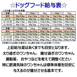 【ドッグフード工房】 800g (普通・小粒)選べる4個(3.2kg)セット 手造りドッグフード (犬用全年齢対応) 馬肉・鶏肉・野菜畑を自由に選んでください|potitamaya-y|05