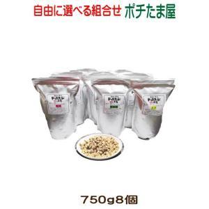 【ドッグフード工房】  800g (普通・小粒)選べる8個(6.4kg)セット 手造りドッグフード (犬用全年齢対応) 馬肉・鶏肉・野菜畑を自由に選んでください|potitamaya-y