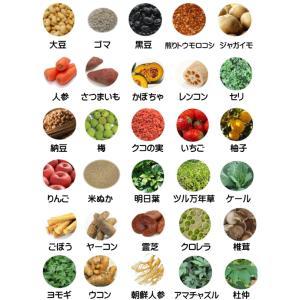 国産 無添加 自然食 健康 こだわり食材  【 お米のドッグフード 】 鶏肉タイプ 800g (犬用全年齢対応)|potitamaya-y|12