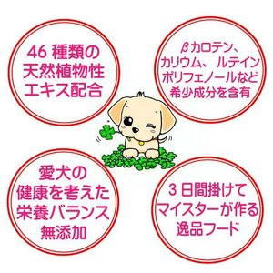 グルテンフリー 【愛犬ワンダフル】 お米のドッグフード 鶏肉タイプ 800g 4個セット (3.2kg) ナチュラル ドッグフード (犬用全年齢対応)|potitamaya-y|05