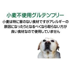 国産国産 無添加 自然食 健康 こだわり食材  【 お米のドッグフード 】 鶏肉タイプ 800g 4個セット (3.2kg) ドックフード (犬用全年齢対応) potitamaya-y 10