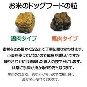 国産 無添加 自然食 健康 こだわり食材  【 お米のドッグフード 】 馬肉タイプ 800g 2個セット (1.6kg) ドックフード (犬用全年齢対応)|potitamaya-y|04