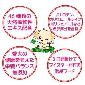 国産 無添加 自然食 健康 こだわり食材  【 お米のドッグフード 】 馬肉タイプ 2.5kg 2個セット (5kg)  ドックフード (犬用全年齢対応)|potitamaya-y|06