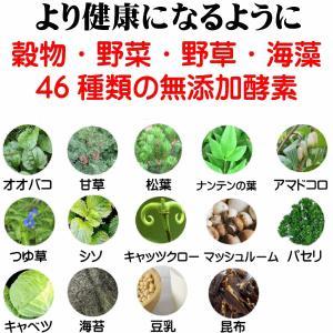 国産 無添加 自然食 健康 こだわり食材  【 お米のドッグフード 】 馬肉タイプ 2.5kg 2個セット (5kg)  ドックフード (犬用全年齢対応)|potitamaya-y|10