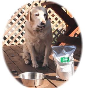 国産 無添加 自然食 健康 こだわり食材 【 ドッグフード工房 】  2kg (普通・小粒)自由に選べる4個セット (犬用全年齢対応) 馬肉・鶏肉・野菜畑|potitamaya-y|06