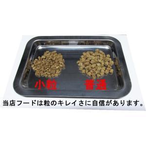 【愛犬ワンダフル】鹿肉タイプ  200g   (小粒も選べます) ナチュラル ドッグフード (犬用全年齢対応) potitamaya-y 02