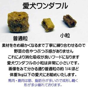 【愛犬ワンダフル】 鹿肉タイプ  800g  4個 (3.2kg)セット ナチュラル ドッグフード  (小粒も選べます)  (犬用全年齢対応)|potitamaya-y|05