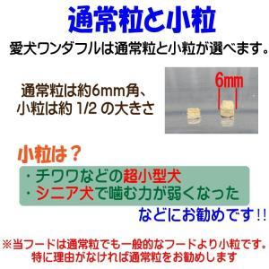 【愛犬ワンダフル】 鶏肉タイプ  200g  (小粒も選べます) ナチュラル ドッグフード (犬用全年齢対応)|potitamaya-y|02