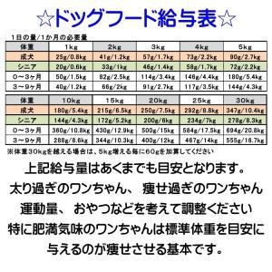 【愛犬ワンダフル】 鶏肉タイプ  200g  (小粒も選べます) ナチュラル ドッグフード (犬用全年齢対応)|potitamaya-y|06
