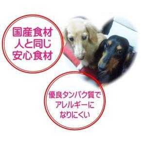 国産 無添加 自然食 健康 こだわり食材  【 愛犬ワンダフル 】 鶏肉タイプ 800g 4個 (3.2kg)セット (小粒・普通粒) 犬用全年齢対応|potitamaya-y|10