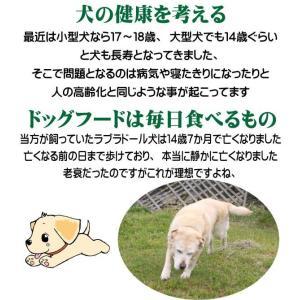 【愛犬ワンダフル】 鶏肉タイプ  800g  (小粒も選べます) ナチュラル ドッグフード (犬用全年齢対応)|potitamaya-y|07