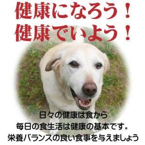 【愛犬ワンダフル】 鶏肉タイプ 4.9kg 2個 (9.8kg)セット  (小粒も選べます) ナチュラル ドッグフード (犬用全年齢対応)|potitamaya-y|06