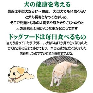 国産 無添加 自然食 健康 こだわり食材  【 愛犬ワンダフル 】 鶏肉タイプ 4.9kg 2個 (9.8kg)セット  (小粒・普通粒) 犬用全年齢対応|potitamaya-y|07