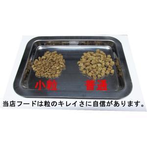 【愛犬ワンダフル】 馬肉タイプ  200g (小粒も選べます) ナチュラル ドッグフード (犬用全年齢対応)|potitamaya-y|02