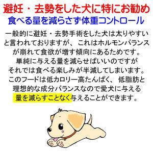 国産 無添加 自然食 健康 こだわり食材  【 愛犬ワンダフル 】 馬肉タイプ  800g 4個 (3.2kg)セット  (小粒・普通粒) 犬用全年齢対応|potitamaya-y|15
