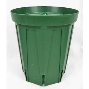 植木鉢・プラスチック鉢(スリットポット)5号ロング(10個1組)