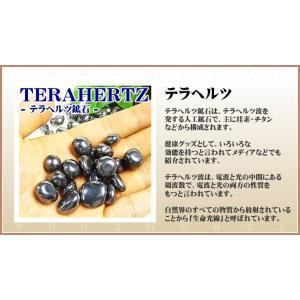 テラヘルツ鉱石さざれ グラム売り /テラヘルツ...の詳細画像3