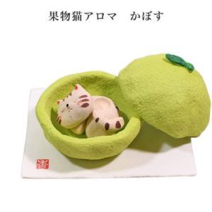 果物猫アロマ かぼす|pp-koshidou