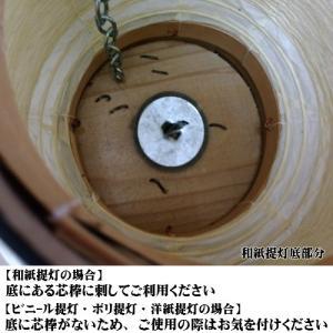 【2個から販売】ANKOU 提灯安光(ちょうちん安光)A〜D【ちょうちん用】 pr-youhin 06