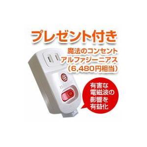 サンラメラ600W型ホワイト(604型) +禅チェアブラック|prema|02