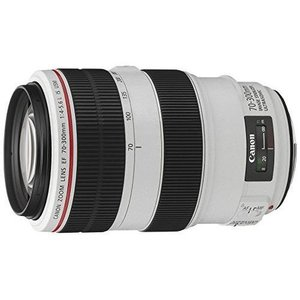 中古 1年保証 美品 Canon 望遠ズームレンズ EF 70-300mm F4-5.6L IS USM