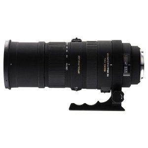 中古 1年保証 良品 SIGMA 超望遠 APO 150-500mm F5-6.3 DG OS HSM ソニー