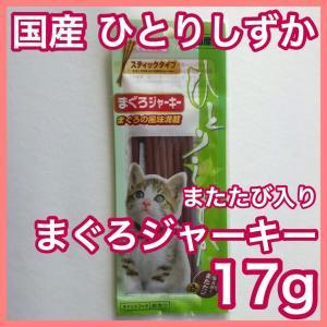 チャオ プチ かつお味  焼かつおプチ かつお節味 国産品 お試し送料無料セット ポイント消化|premium-asuka