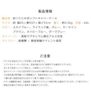 スーツケース 機内持ち込み キャリーバッグ 折りたたみ 大容量 軽量 キャリーケース 折り畳み 修学旅行 ビジネス出張 旅行かばん 夏休み お盆 海外 国内|premium-interior|21