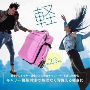 スーツケース 機内持ち込み キャリーバッグ 軽量 ソフトスーツケース キャスター付き リュック ソフトキャリーバッグ 旅行かばん 夏休み お盆 帰省 国内 海外|premium-interior|04