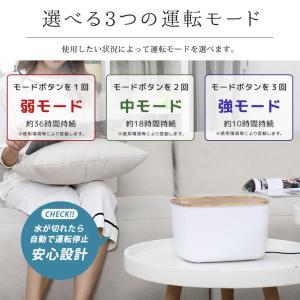 加湿器 卓上 超音波式 静音設計 大容量 LEDライト 空焚き防止 アロマディフューザー 空気浄化 持続保湿 オフィス 寝室 肌荒れ対策 ドライアイ対策 ギフト|premium-interior|04