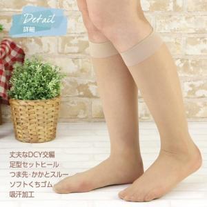 CONCEPT/コンセプト ストッキング素材 ハイソックス 3足セット (送料無料) LEG009 01325003|premium-lingerie