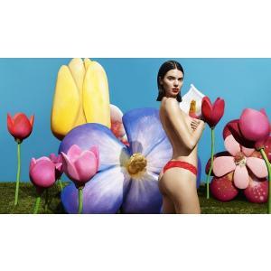 LA PERLA/ラペルラ 総レース タンガ Lp004 フリーダムパンティー FREEDOMPANTY ギフト プレゼント フリーサイズ 伸びる ショーツ Tバック カラフル|premium-lingerie
