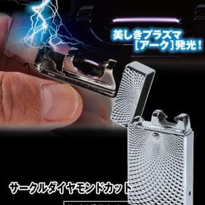 USB式プラズマライター(電気式ライター/パソコン充電可能/アーク/発光/ガス・オイル不要)|premium-pony