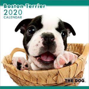 2020年ボストン・テリアカレンダー|premium-pony