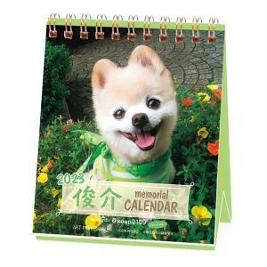 2020年猫川柳 週めくりカレンダー premium-pony
